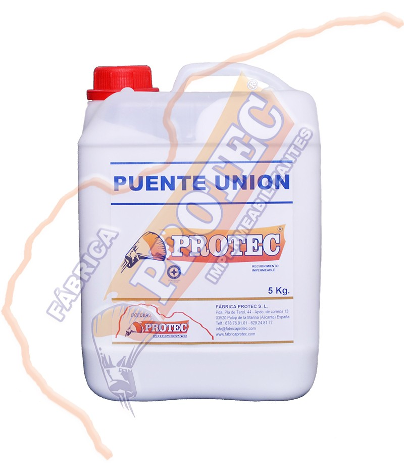 Puente Union